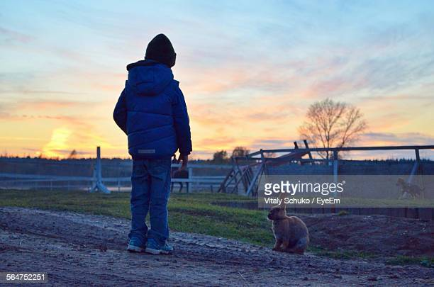 Rear View Of Boy With Rabbit Standing On Dirt Road