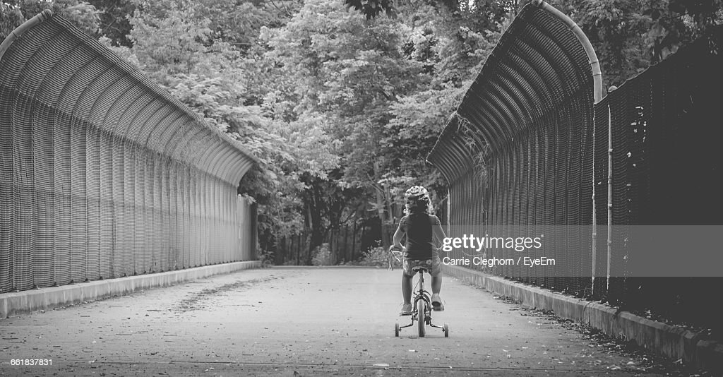 Rear View Of Child Riding Bicycle On Pathway Leading Towards Trees