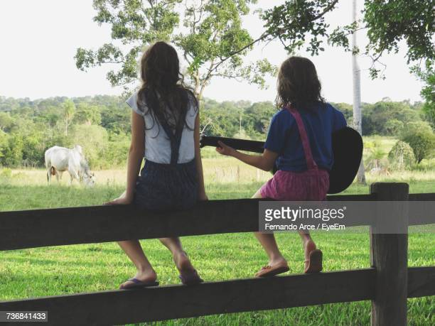 Rear View Of Children Sitting On Fence