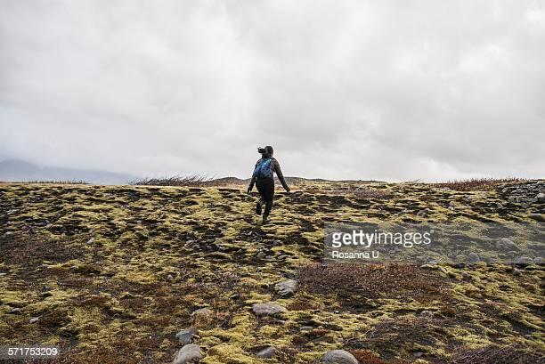 Rear view of female tourist running across moorland,  Skaftafell, Iceland