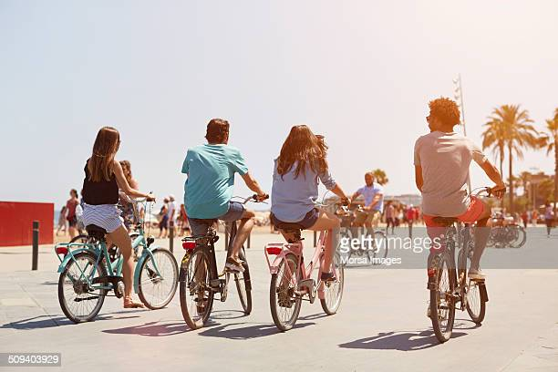 Rear view of friends riding bicycle on street