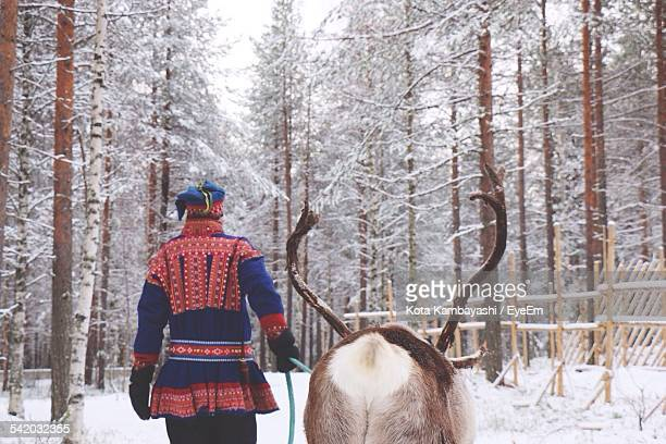Rear View Of Herder With Reindeer In Forest During Winter