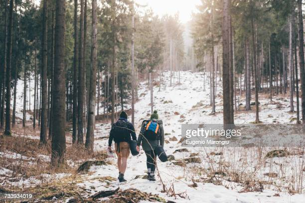 Rear view of hiking couple hiking in snowy forest, Monte San Primo, Italy