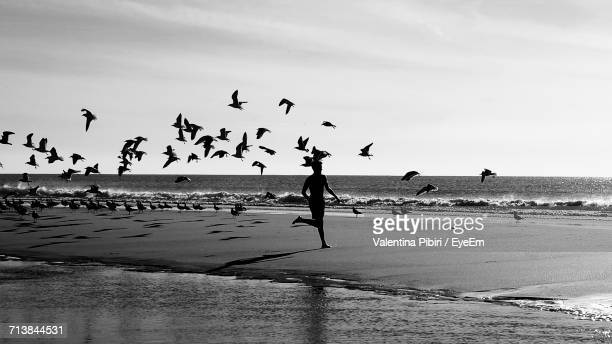Rear View Of Man Running By Birds On Shore At Beach