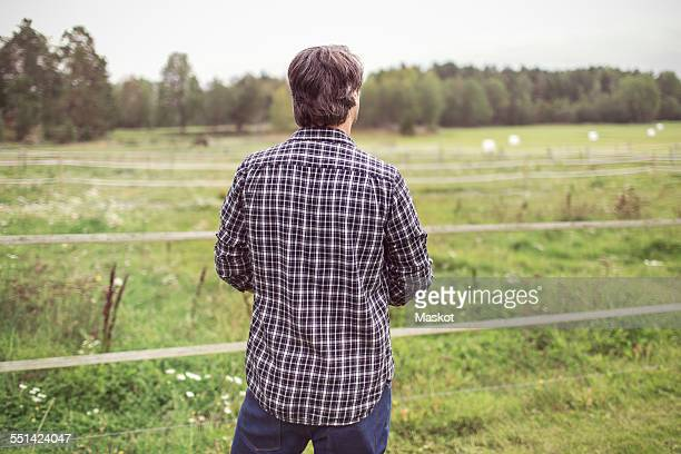 Rear view of man standing at organic farm