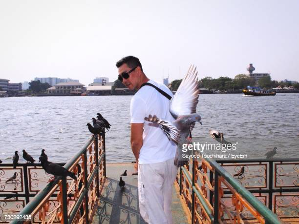Rear View Of Man Standing By Pigeons On Pier Against Lake