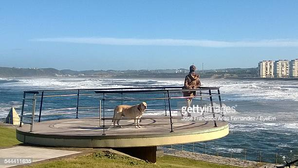 Rear View Of Man Standing With Dog On Observation Point And Looking At Sea