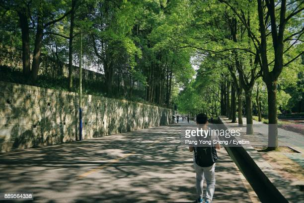 Rear View Of Man Walking Amidst Trees