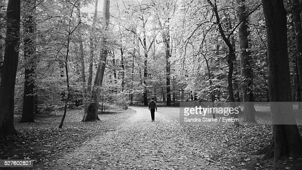 Rear View Of Man Walking On Dirt Road In Forest