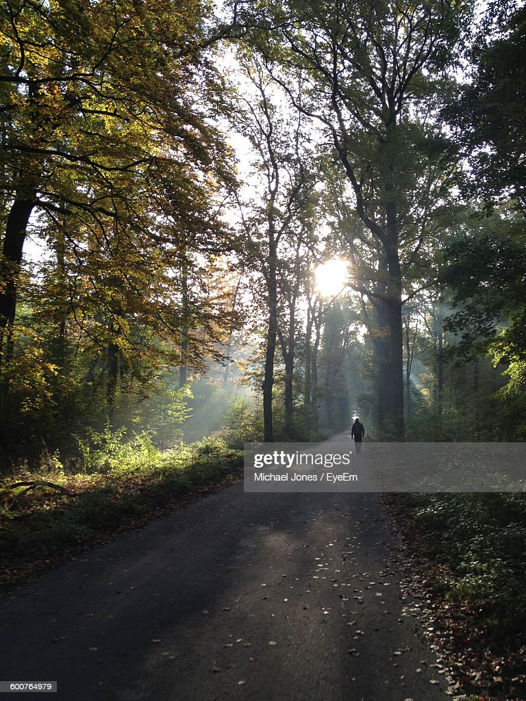 Rear View Of Man Walking On Road Amidst Trees At Forest