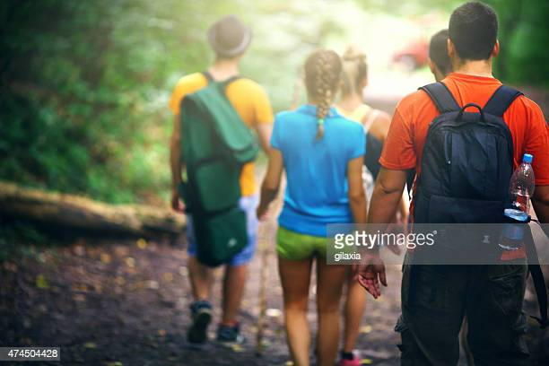 Rear view of people hiking in woods.