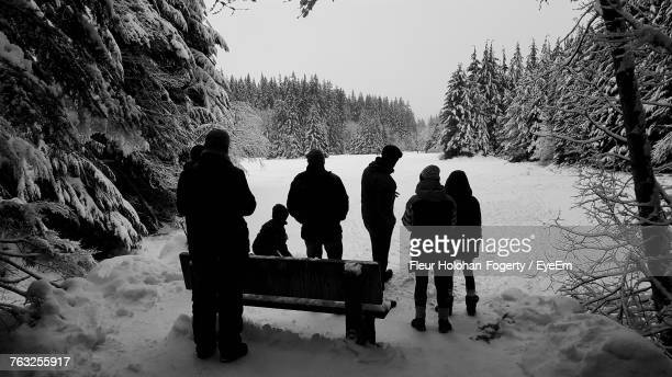 Rear View Of People Standing On Snow In Forest