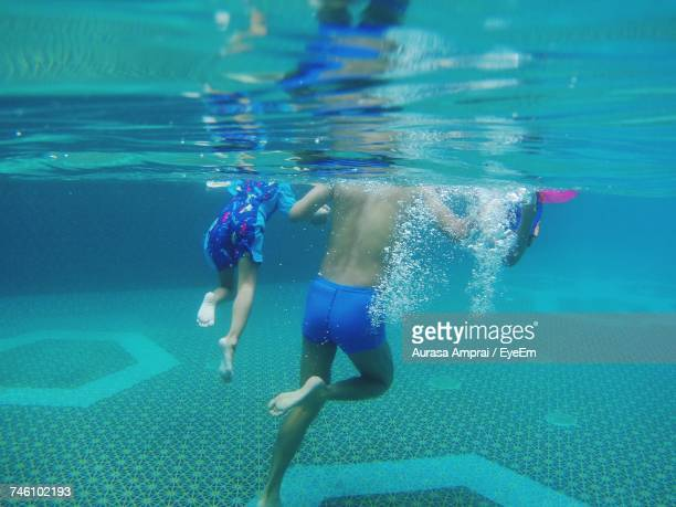 Rear View Of People Swimming In Pool