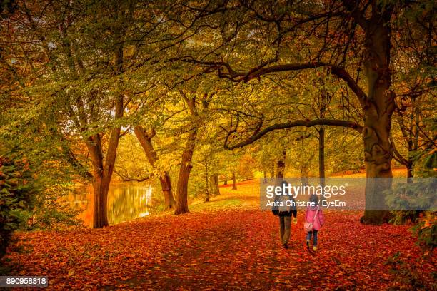 Rear View Of People Walking In Forest During Autumn