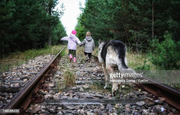 Rear View Of Siblings And Dog Walking On Railroad Track