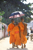 Rear View of Three Buddhist Monks Walking on a Pavement With an Umbrella in the City