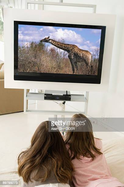Rear view of two girls watching television