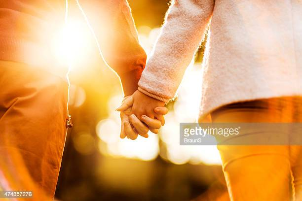 Rear view of unrecognizable couple holding hands at sunset.
