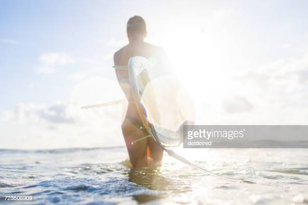 Rear view of woman carrying surfboard in sunlit sea, Nosara, Guanacaste Province, Costa Rica