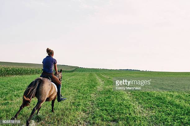 Rear view of woman galloping on bay horse in field