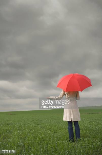 Rear view of woman holding umbrella in field
