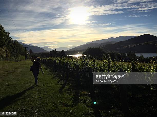 Rear View Of Woman Raising Wineglass At Vineyard Against Cloudy Sky