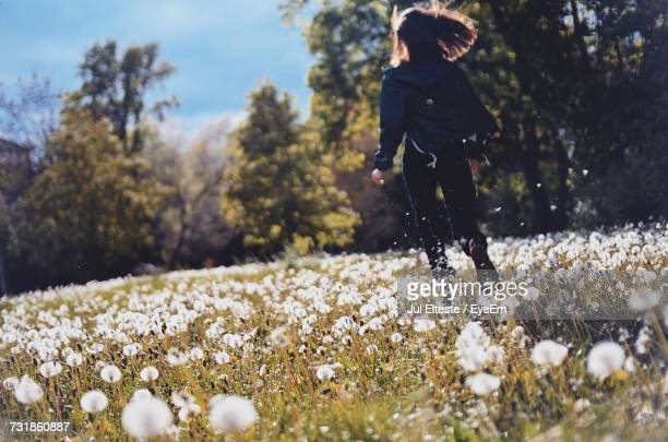 Rear View Of Woman Running At Dandelion Field