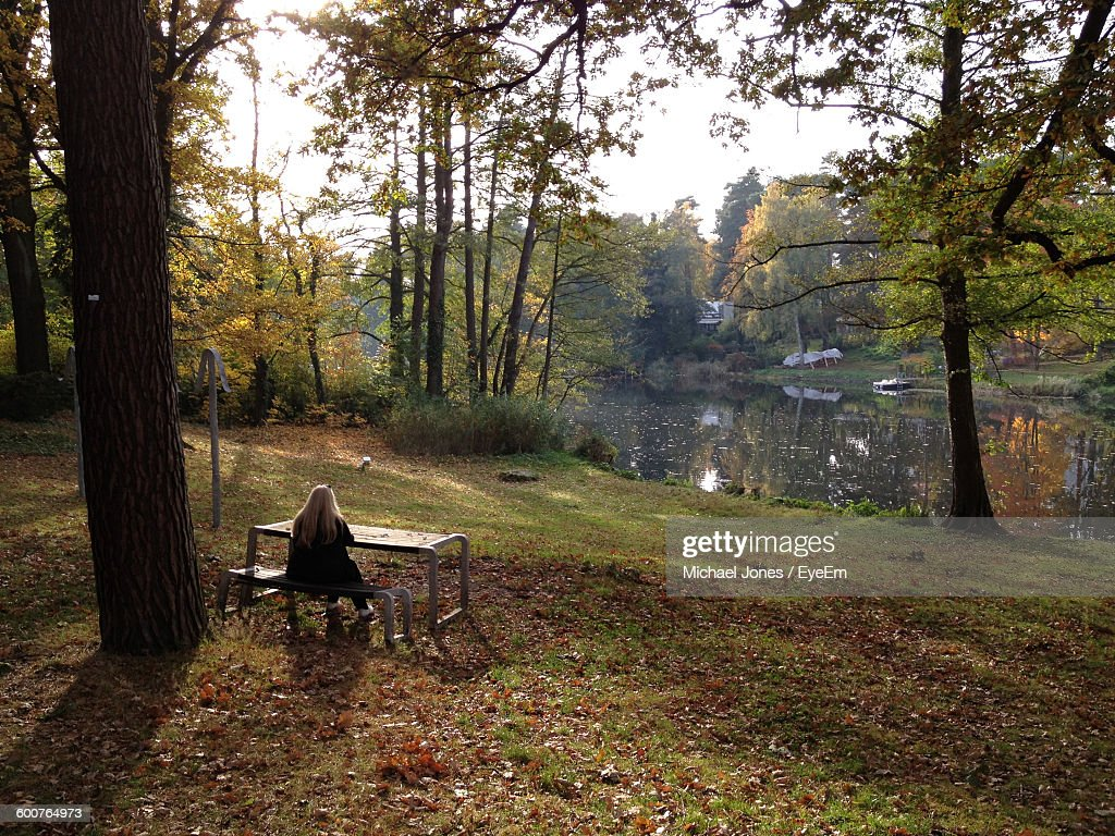 Rear View Of Woman Sitting On Bench At Park