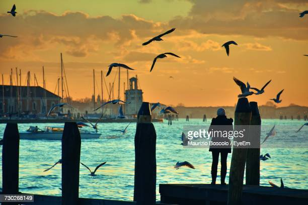 Rear View Of Woman Standing On Pier While Birds Flying Over Lake Against Sky During Sunset