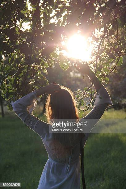 Rear View Of Woman Standing Under Tree On Grassy Field During Sunny Day