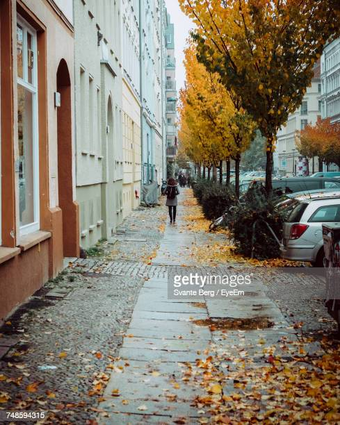 Rear View Of Woman Walking On Sidewalk By Autumn Trees In City