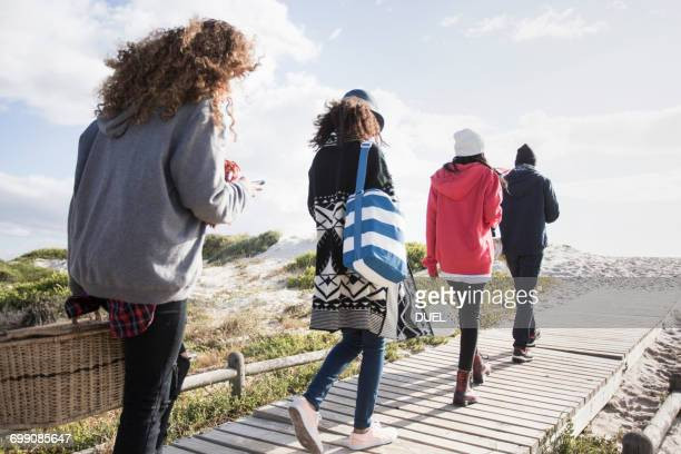 Rear view of young adult friends strolling along beach boardwalk reading smartphones, Western Cape, South Africa