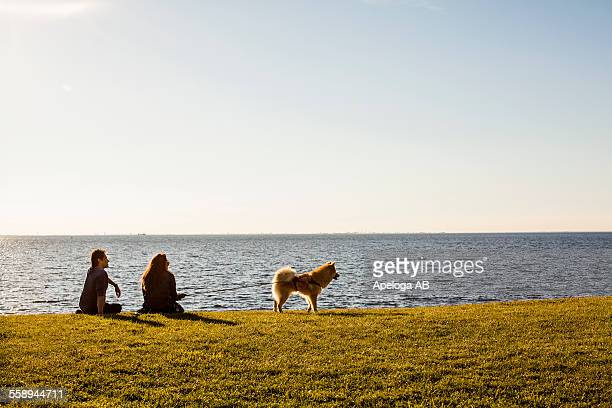 Rear view of young couple with dog sitting on grassy landscape by sea against clear sky