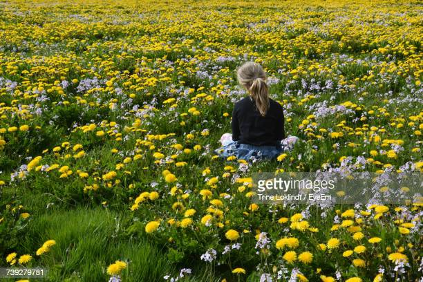 Rear View Of Young Woman With Yellow Flowers In Field