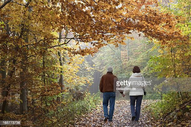 Rear view on senior couple walking in autumn forest (XXXL)