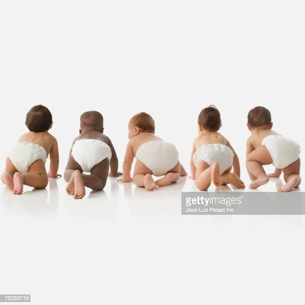 Rear view studio shot of babies crawling
