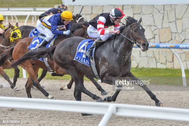 Reata ridden by Arron Lynch wins the XXXX Gold Maiden Plate at Racingcom Park Synthetic Racecourse on August 03 2017 in Pakenham Australia