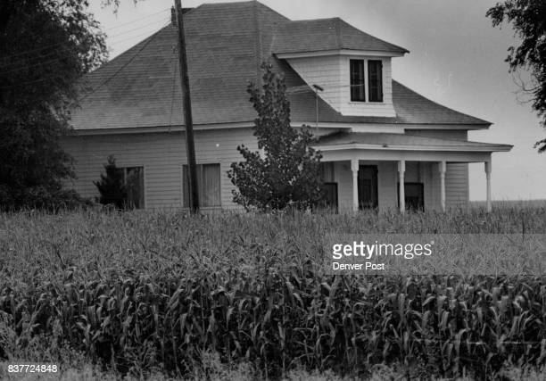 Record Year For Corn Corn crop pictured may not be as tall as an elephant's eye as the song goes but it is as high as the porch of this small house...