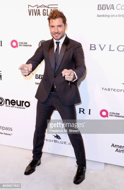 Recording Artist David Bisbal attends the 25th Annual Elton John AIDS Foundation's Academy Awards Viewing Party at The City of West Hollywood Park on...