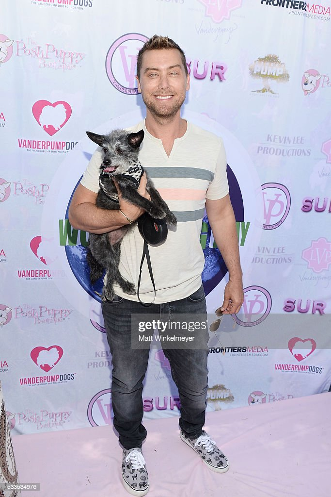 Recording artist Lance Bass attends the World Dog Day Celebration at The City of West Hollywood Park on May 22 2016 in West Hollywood California