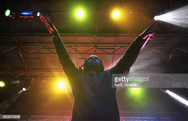 Recording artist Wale performs onstage during the 2016 Billboard Hot 100 Festival Day 1 at Nikon at Jones Beach Theater on August 20 2016 in Wantagh...