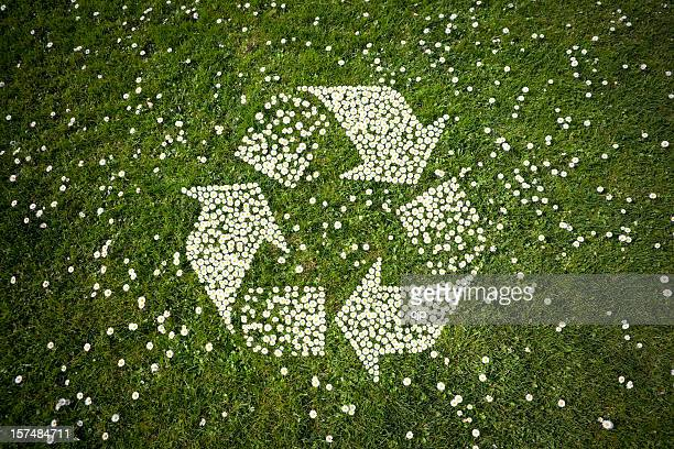 Recycle Logo in Daisies on Grass
