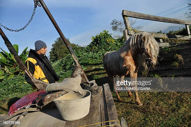 A recycler frees his horse from the cart on February 26 in Bogota Colombia after taking part in a caravan of 50 recyclers pickers and loaders on...