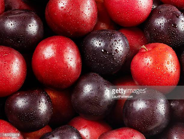 Red and Black Plums