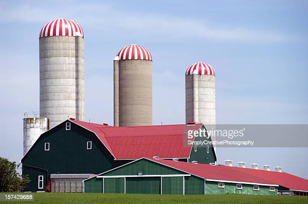 Red and Green Barns