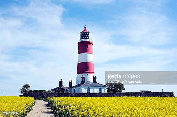 Red and white lighthouse in a field of rapeseed.