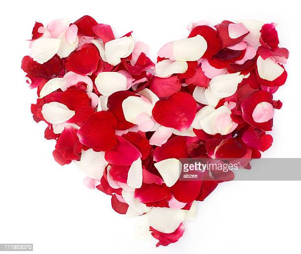 Red and white rose petal heart