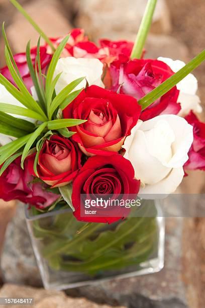 Rouge et blanc de Roses