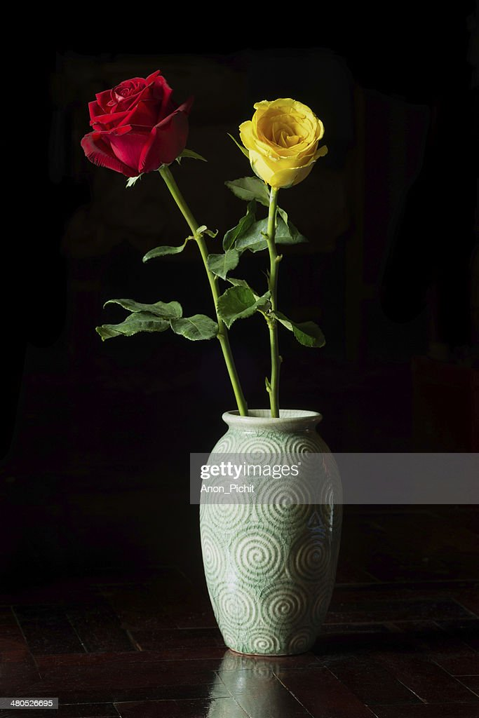 red and yellow roses in vase on black background. : Stock Photo