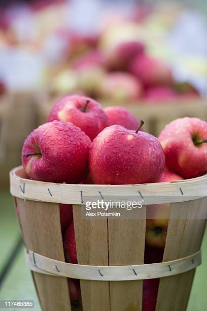 Red apple with waterdrops in the basket